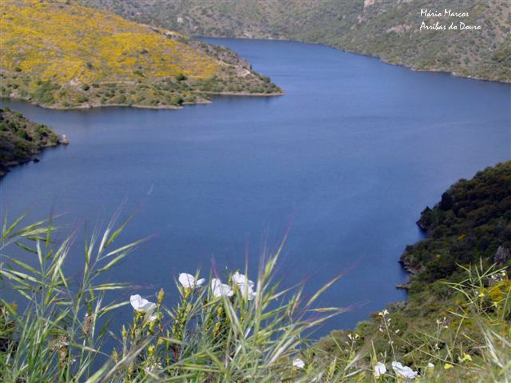 Douro international nature park 1 1024 2500